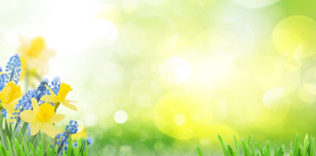 Can the arrival of spring and warmer days actually make sciatica worse