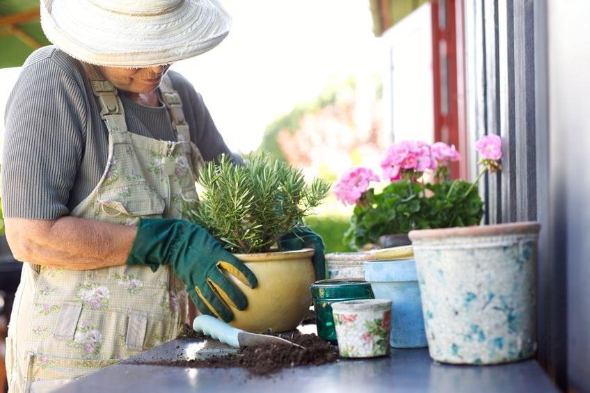 Prevent sciatica after gardening